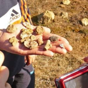 Excursión a Llama de Colle y fósiles